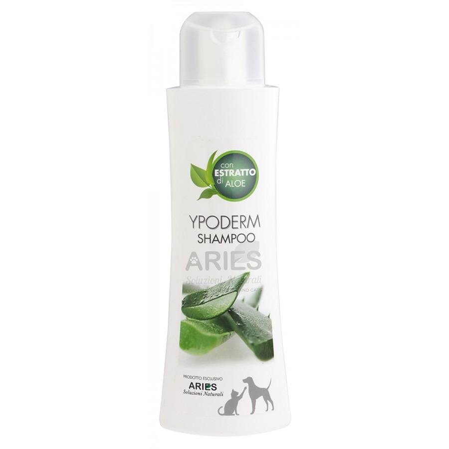 Ypoderm Shampoo | 250ml