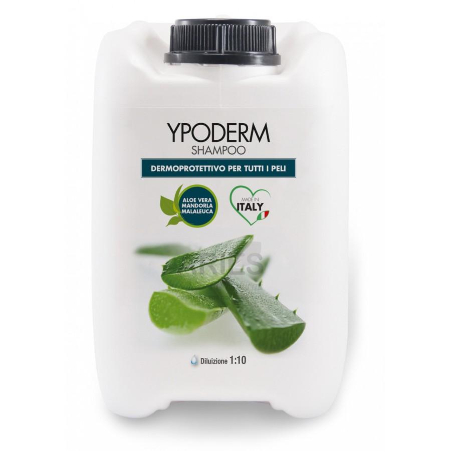 Ypoderm Shampoo | 5L
