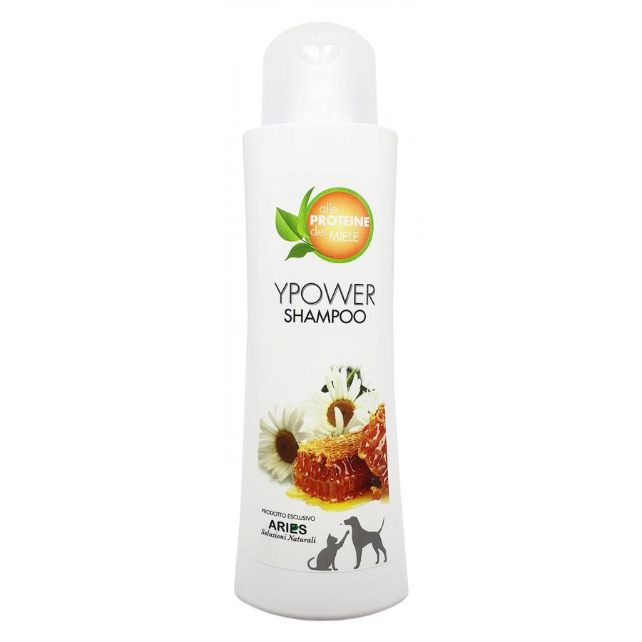 Ypower Shampoo | 250ml