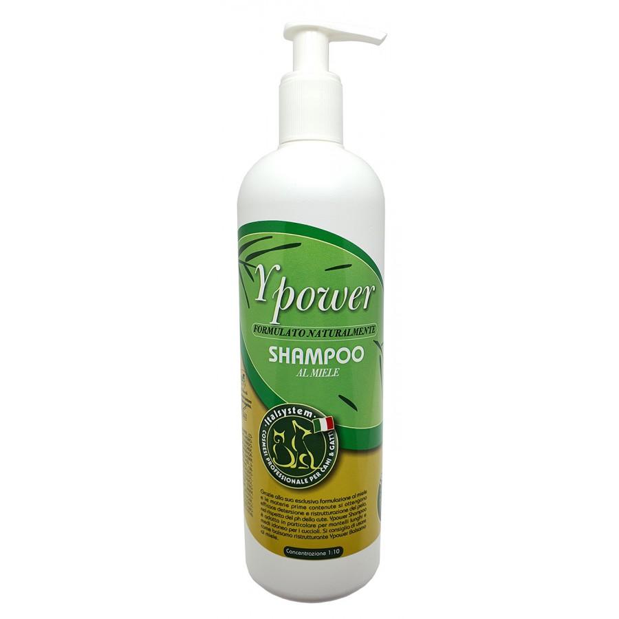 Ypower Shampoo | 500ml