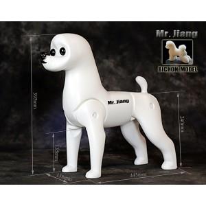 Modell Kutya Test | Szőr Nélkül