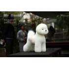 Bichon Model Dog | Whole Body Dog Wig