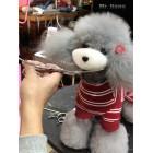 Teddy Model Dog | Whole Body Dog Wig - Gray
